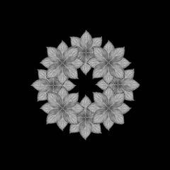 Meditation on a Spring Garden 7 (Photograph, Geometric, Symmetry, Gray)