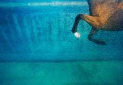 Equus on Blue (Photograph, Print, Horses, Underwater, Swimming, Blue)