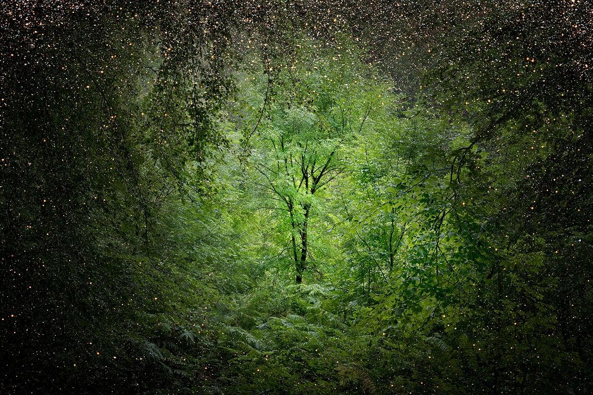Stars 10 - Ellie Davies, Contemporary Landscape, Night sky, Photography, Nature