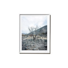 Riverbed, 2017, from the Survivors series (Framed Color Landscape Photography)