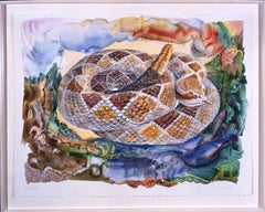Large-scale Watercolor by Don Nice, Western Rattlesnake, 1988
