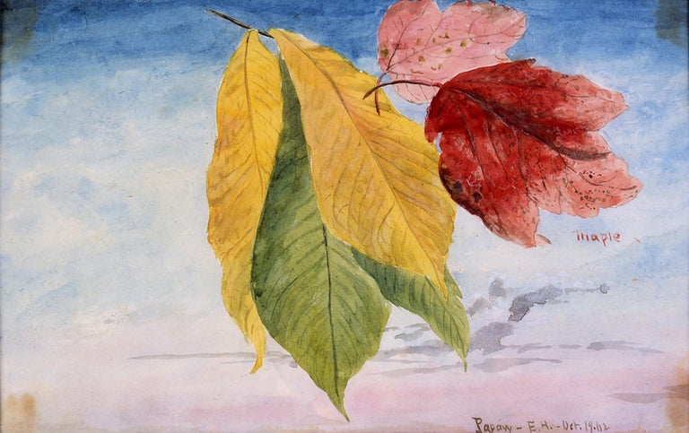 19th Century Watercolor, Autumn Leaves Against the Sky, 1862