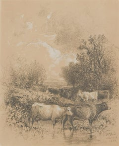 Nineteenth Century Drawing, Cows Watering, 1877