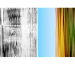 Untitled Diptych 2002 #9