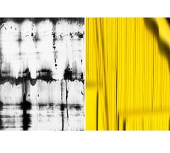 Untitled Diptych 2014 #5