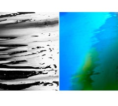 Untitled Diptych 2007 #2