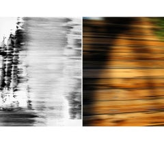 Untitled Diptych 2007 #8