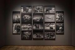 Elephants in heaven, Kenya, 21st century, contemporary, wildlife, Fine Art Print
