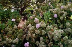 Jeune fille en fleurs, Normandie