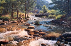 """""""Hill Country River""""  Texas realism Gorgeous"""