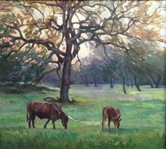 """Close of the Day"" Texas Hillcountry Landscape with Texas Longhorns"