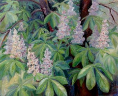 """Buckeye""  Horse Chesnut in bloom"