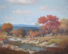 """TEXAS HILL COUNTRY RIVER"""