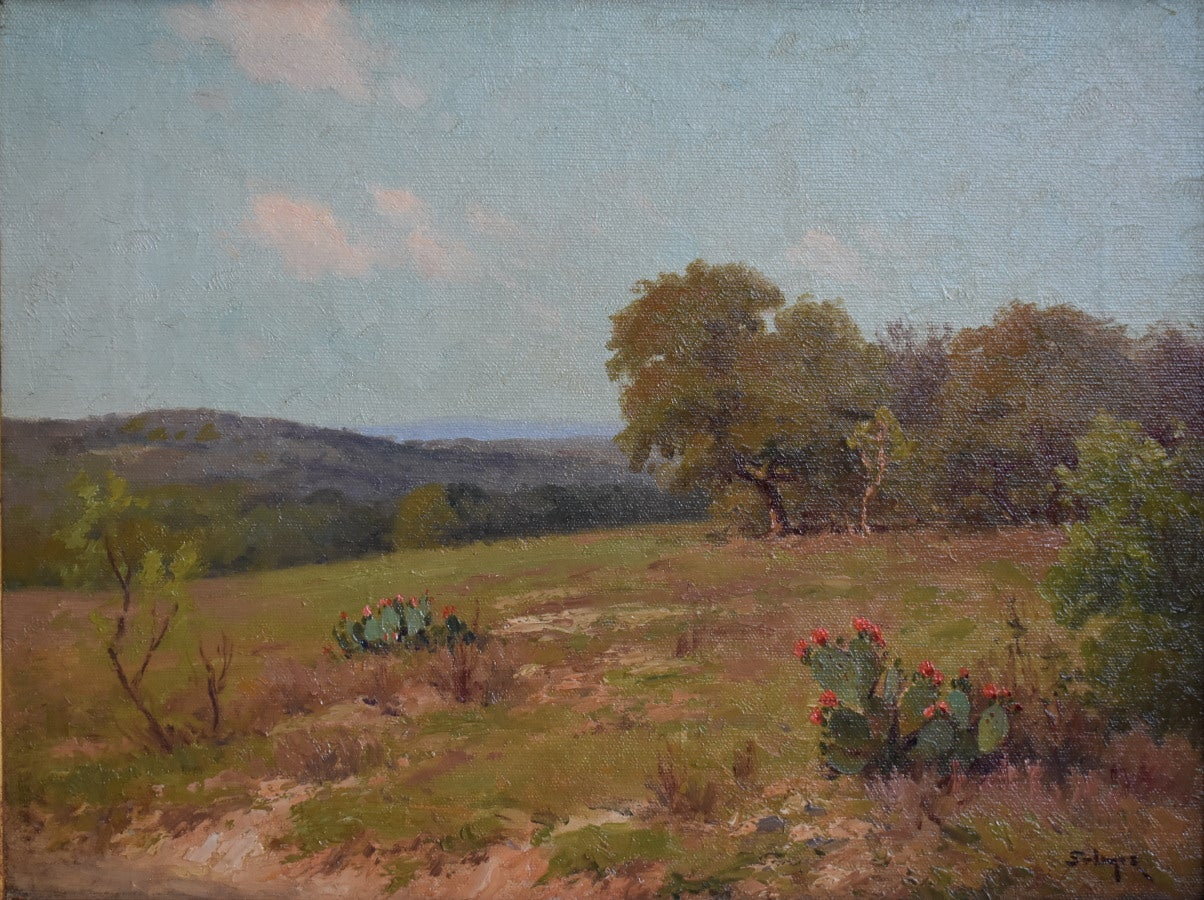 """ Hill Country Blooms ""  SPRING COLORS  blooming Prickly Pear Cacut Texas Hills"