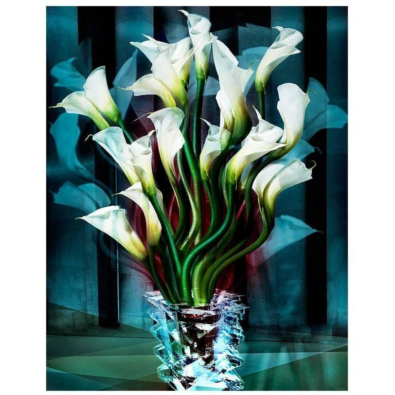 Calla Lilies - Photograph by Angelika Buettner