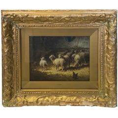 Sheep in Barn Relishing Sunlight