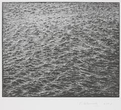 Vija Celmins - Ocean Surface