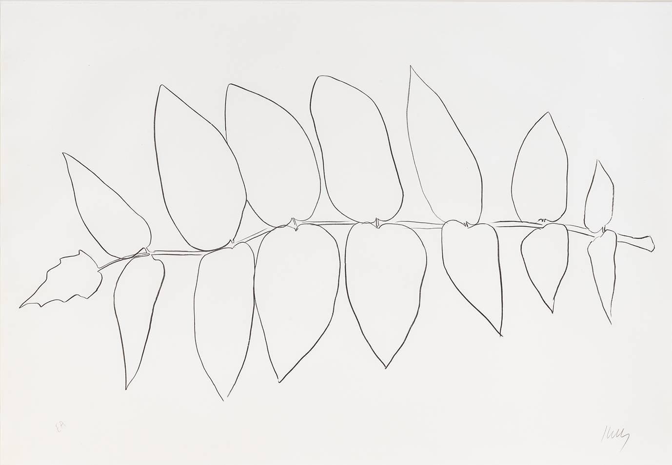 Alianthus Leaves I