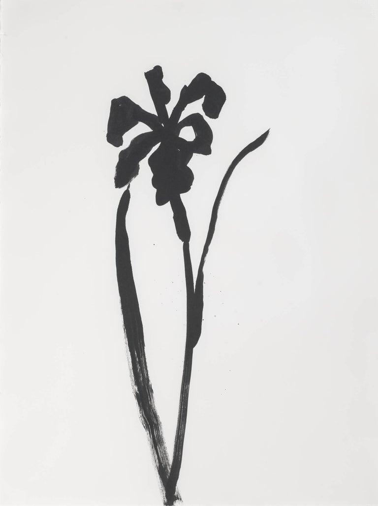 Ellsworth Kelly Still-Life - Siberian Iris