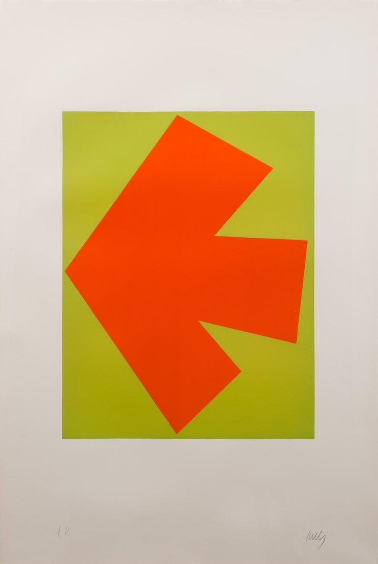 Ellsworth Kelly Abstract Print - Orange over Green