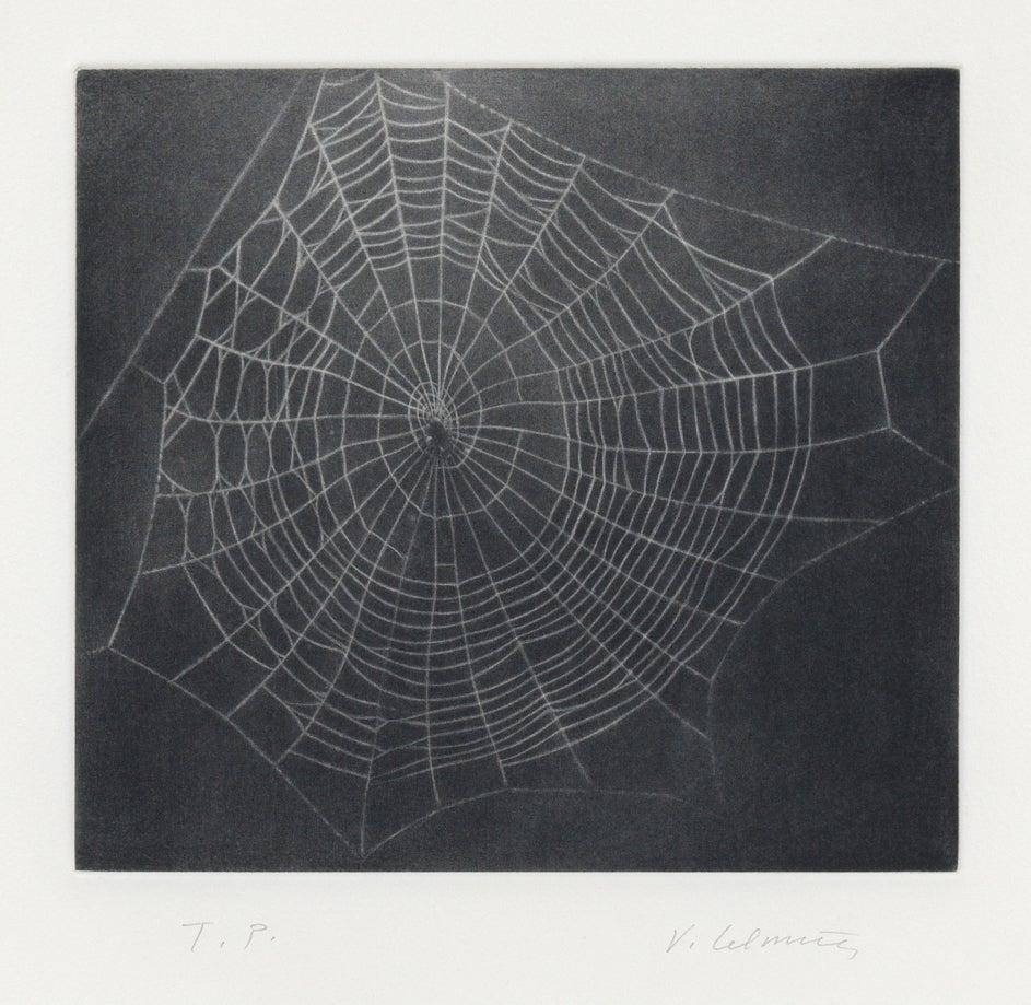 Untitled (Web I)