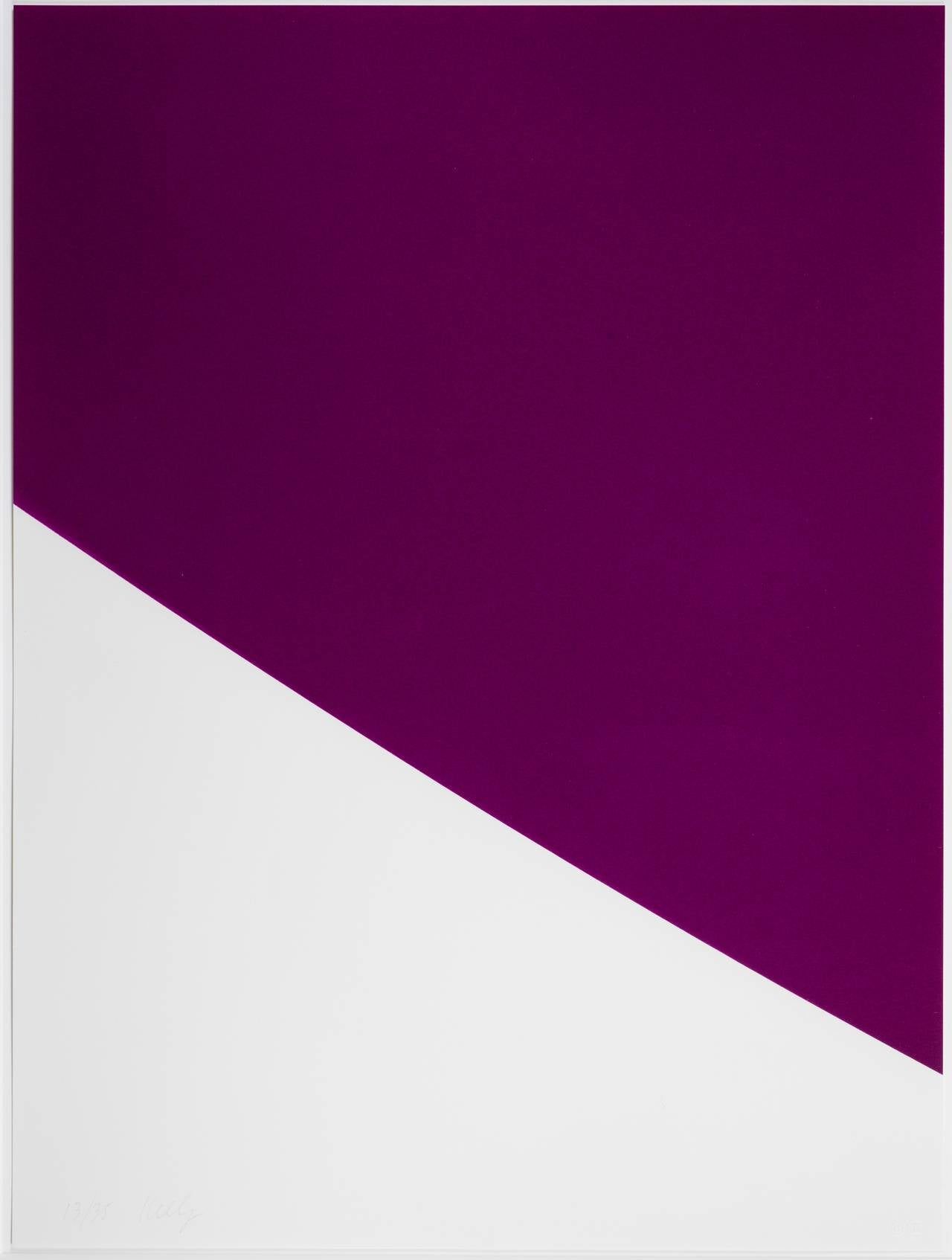 Ellsworth Kelly Purple Curve Print For Sale At 1stdibs