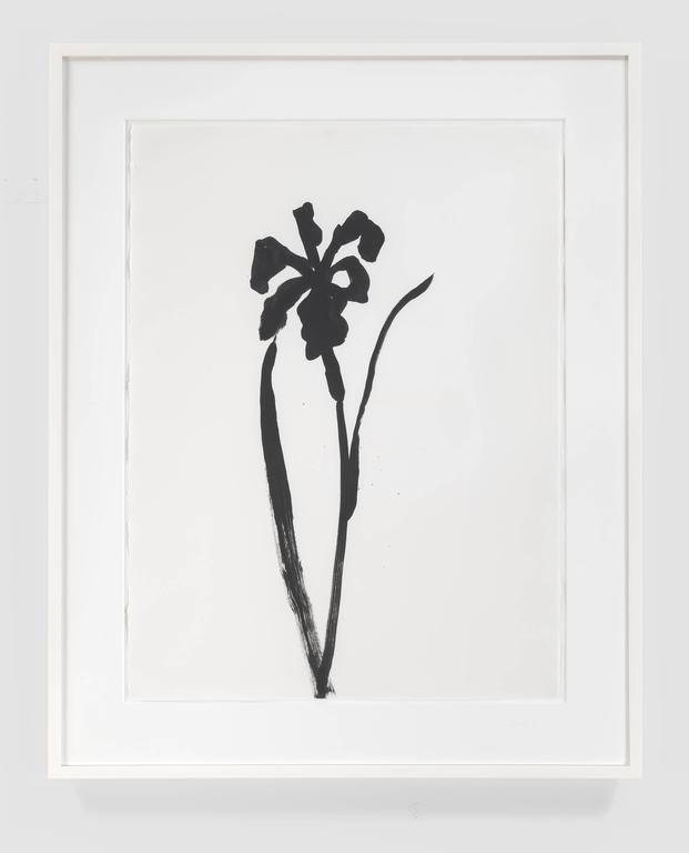 Siberian Iris - Art by Ellsworth Kelly