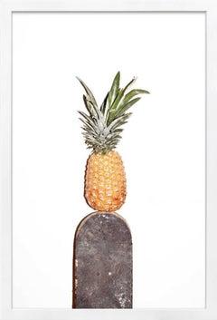 Oso Parado, @Pineapple_Sk8 - Photographic Print