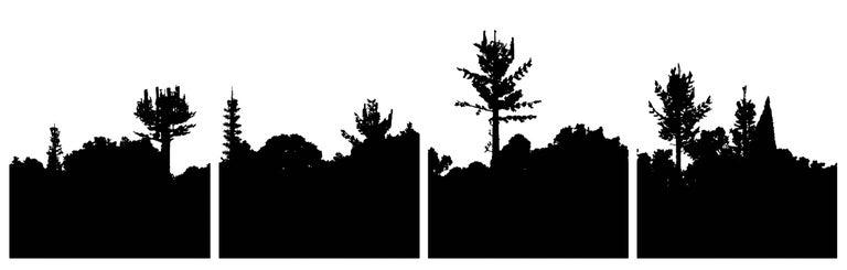Daniel Alcalá Landscape Print - Naturaleza y Artificio
