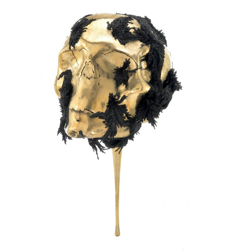 Romain Langlois Figurative Sculpture - Jericho mask - skull bronze sculpture