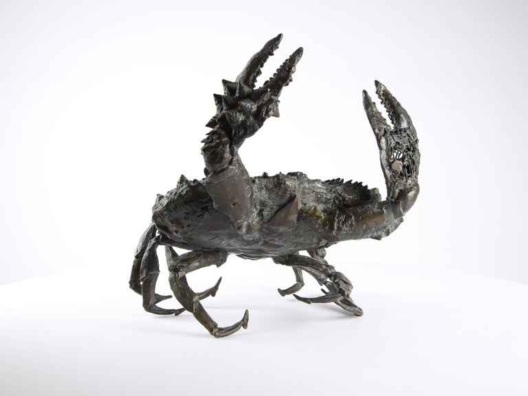Crabe aux pattelas, Bronze Sealife Sculpture