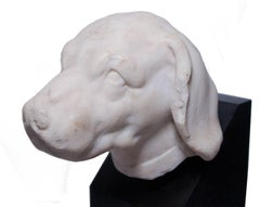 White marble head of a dog