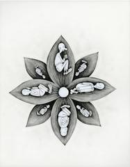In Bloom (Seed Fellers)