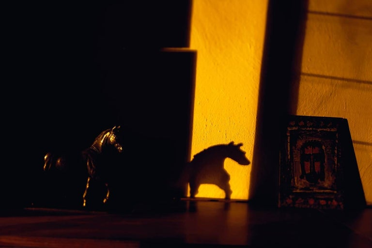 Lake Verea Abstract Photograph - Dark Rooms. Barragán in the shade 7