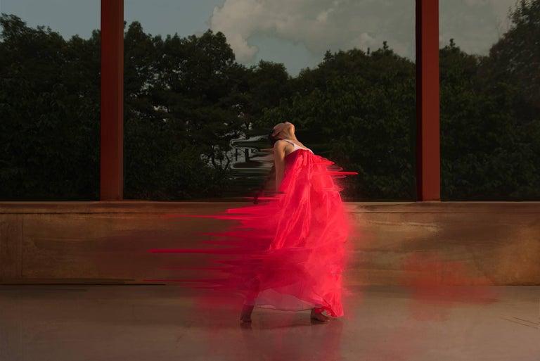 Damián Siqueiros Color Photograph - The Song of Red 3 (medium)