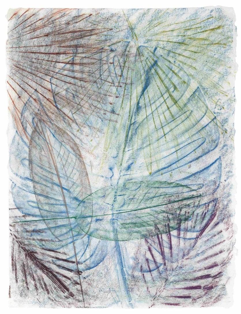 Untitled (California Palm Rubbing 10)