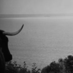 Jenny Owens: photograph: Tarifa Series