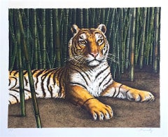 Bengal Tiger Portrait, Hand Drawn Lithograph, Wildlife Art, Big Cat