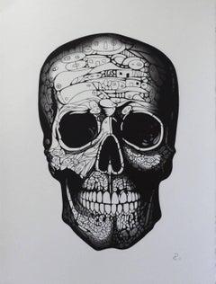 """""""Eve"""" - Skull drawing, pen on paper, framed"""