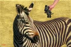 In the Moment: Zebra