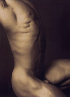 Adam (Male Nude #1, a bronze side view of a defined nude torso/ the first man?)