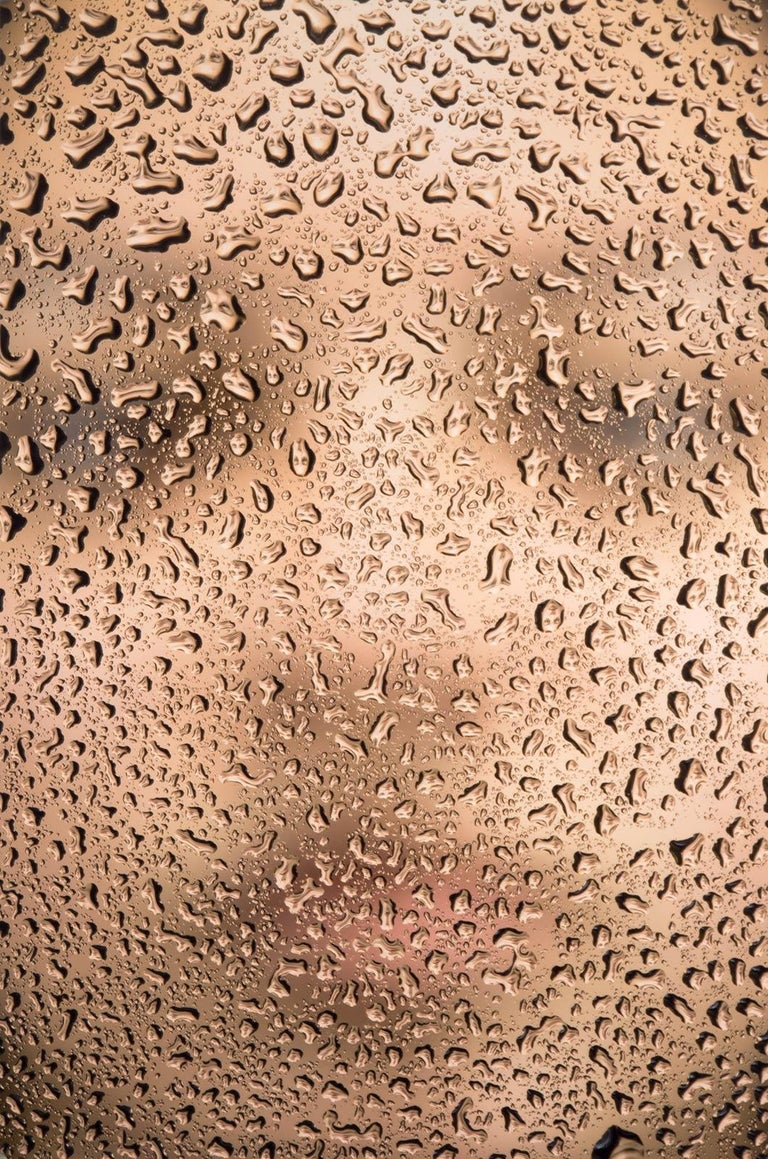 Alyssa (Woman's head  as  seen thru water droplets which in turn are body parts)