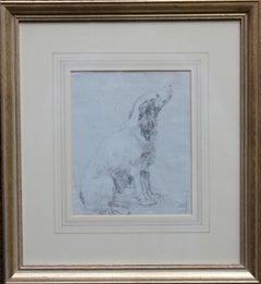 Portrait of a Spaniel - British Old Master drawing animal art dog