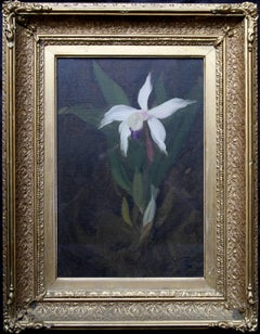 Orchid - Scottish Glasgow Boy 19thC floral still life oil painting white flower