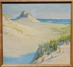 View to the Ocean through the Dunes