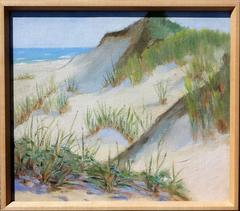 The Mountain Dune