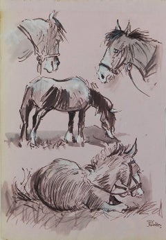 Study Sketches of Horses by Peter Hobbs, 1930-1994 Sepia tone Watercolor