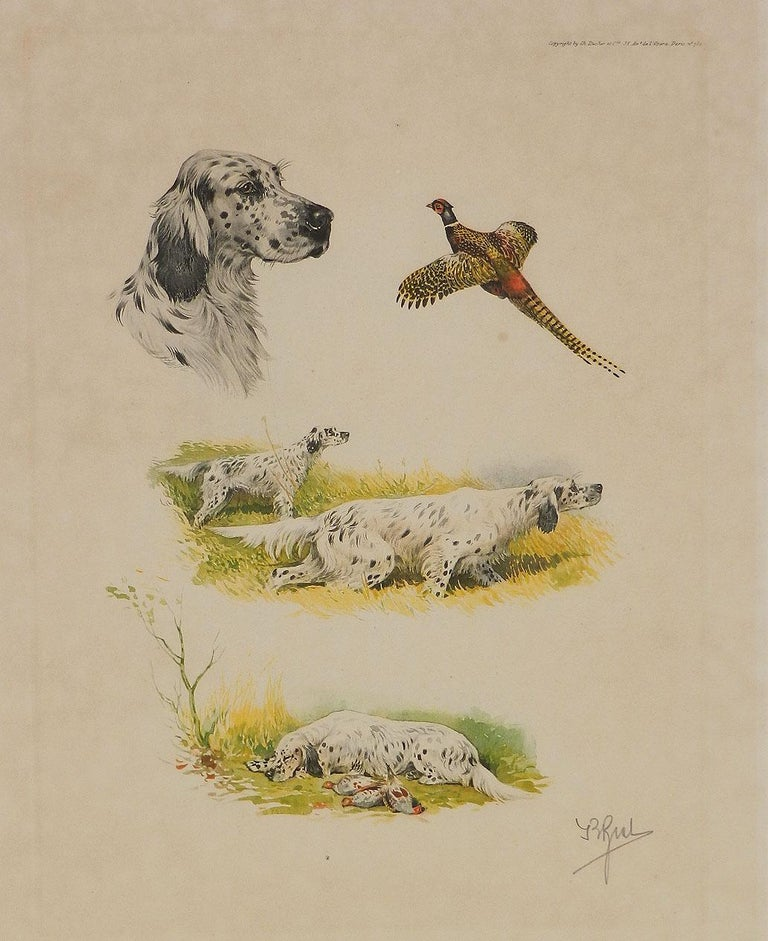 Etching Aquatint of Working Dogs and Pheasant French    Signed in pencil by artist Boris Riab 1898-1975 contemporary of Leon Danchin Published by Ch. Ducher Paris Unframed Actual image plate size 32 x 25cms Old  Art Cartridge Paper with general