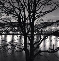 Tree, Seine and Quai Voltaire, Paris, France, 2013 - Michael Kenna