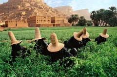 Clover Gatherers in Wadi Hadramawt, Yemen, 1999 - Colour Photography